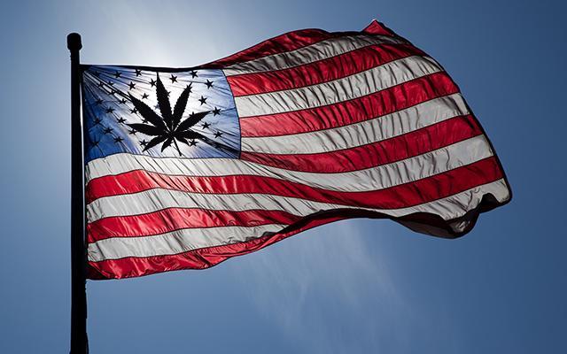 AmericanFlag-PotLeaf