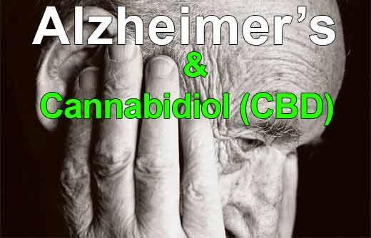 CBD reverses dementia