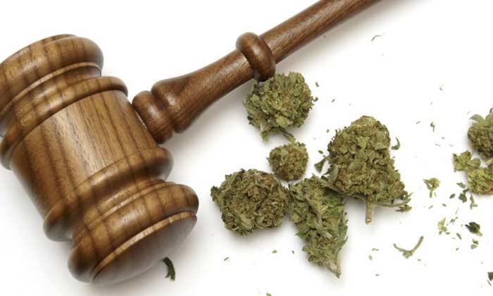 Federal-Marijuana-Law